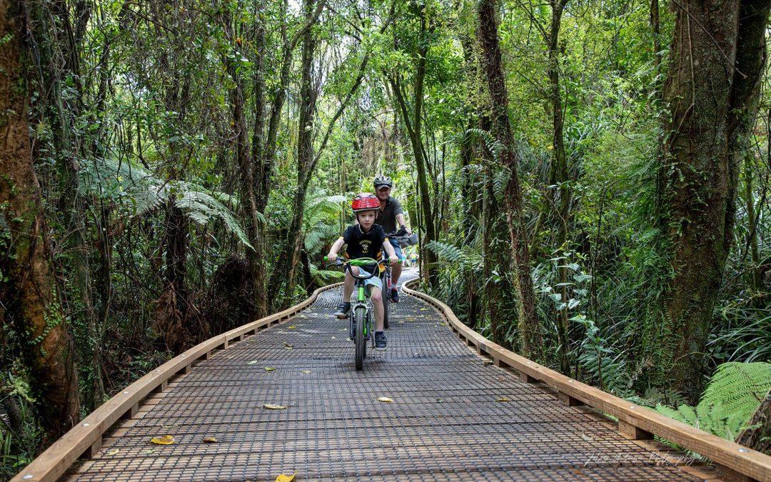 Discovering the Kawatiri Coastal Trail